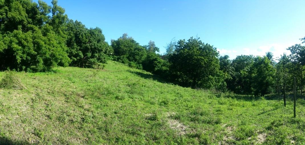 100×100 feet plot of land for sale in Mtwapa/Mtomondoni.