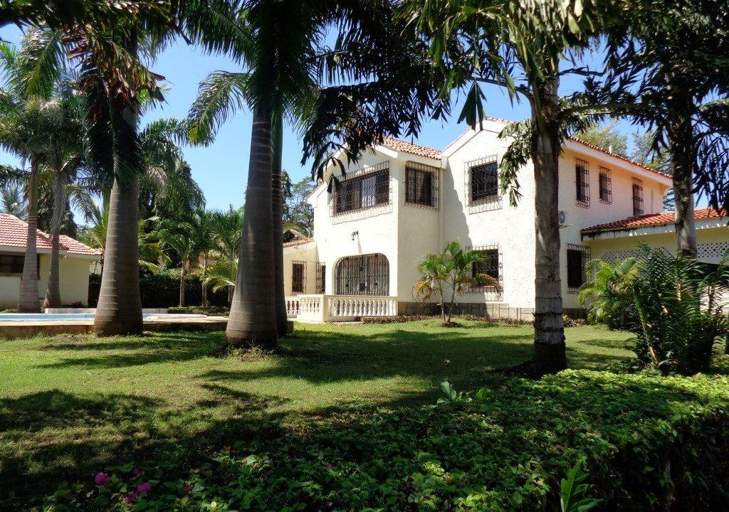Palm Garden 01