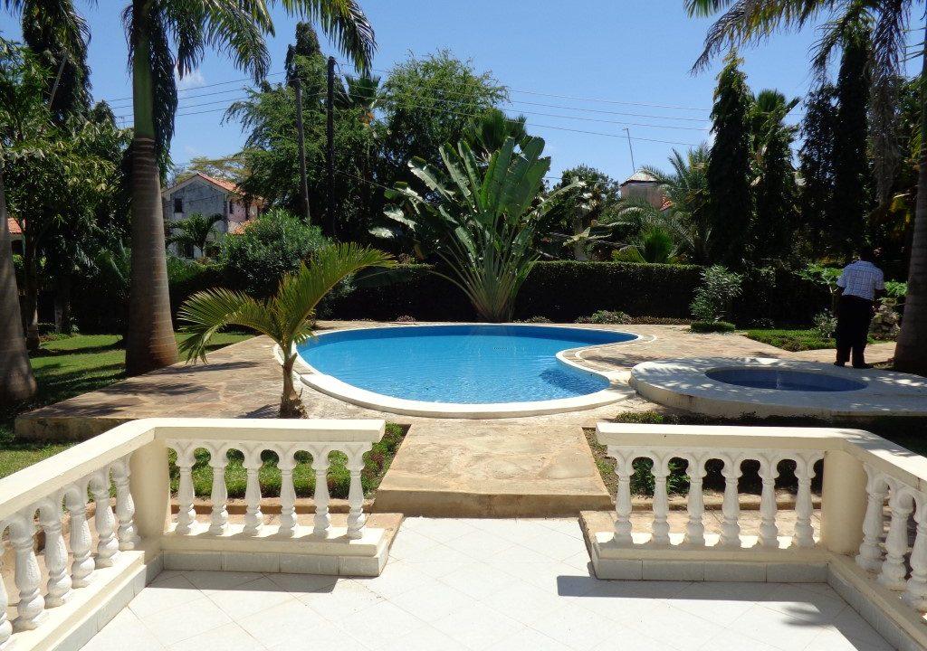 Palm Garden 19
