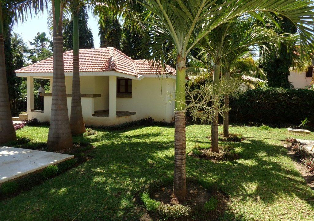 Palm Garden 20