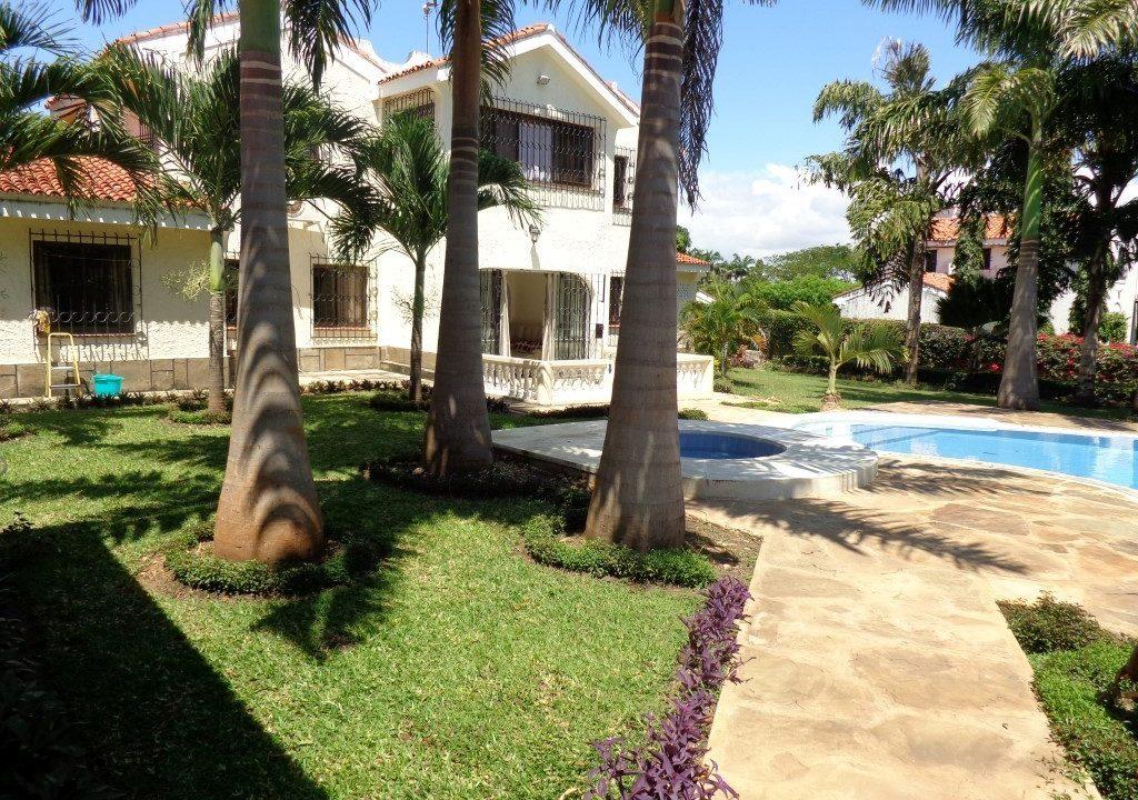 Palm Garden 21