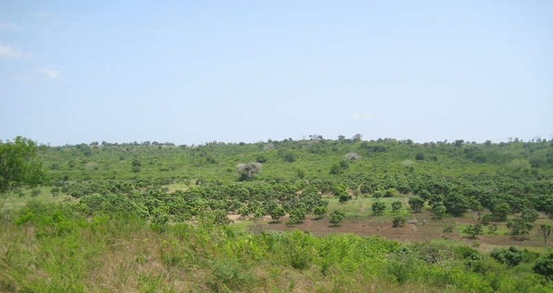 1 acre plot for sale in Mtwapa near to Mombasa Northern Bypass