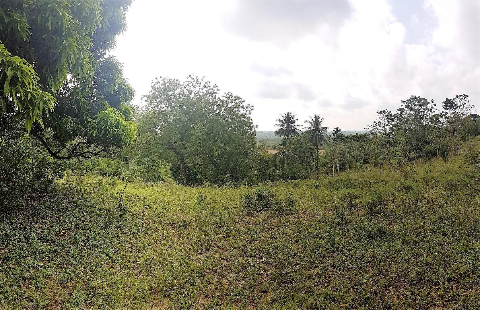 Half acre plot for sale in Mtwapa/Mtomondoni