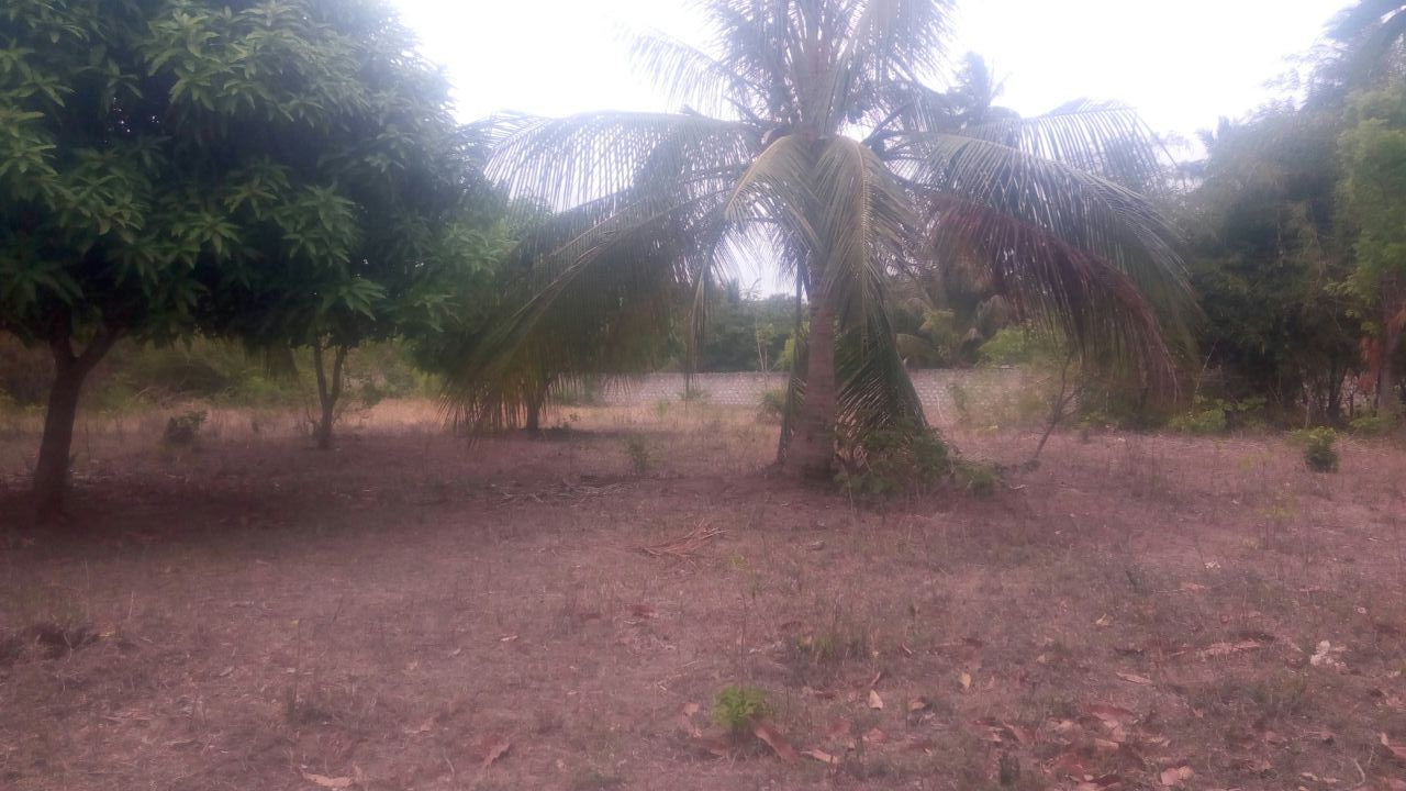 0.25 acre for sale in Vipingo Kuruwitu Beach area