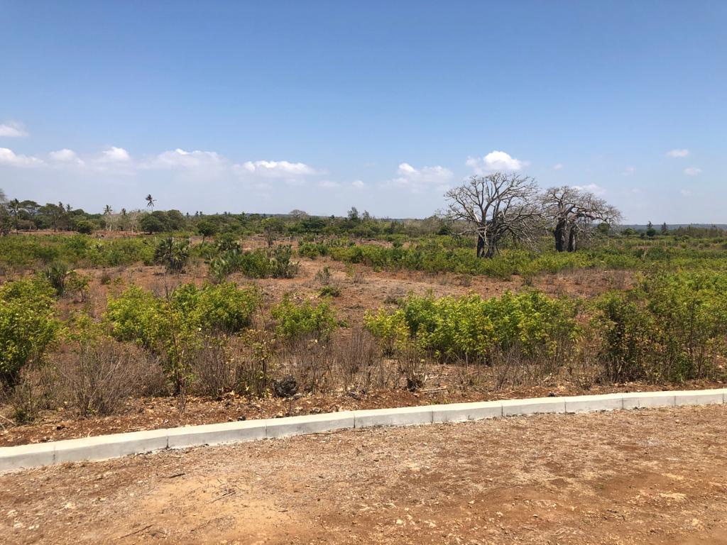 Quarter acre plots for sale in Vipingo