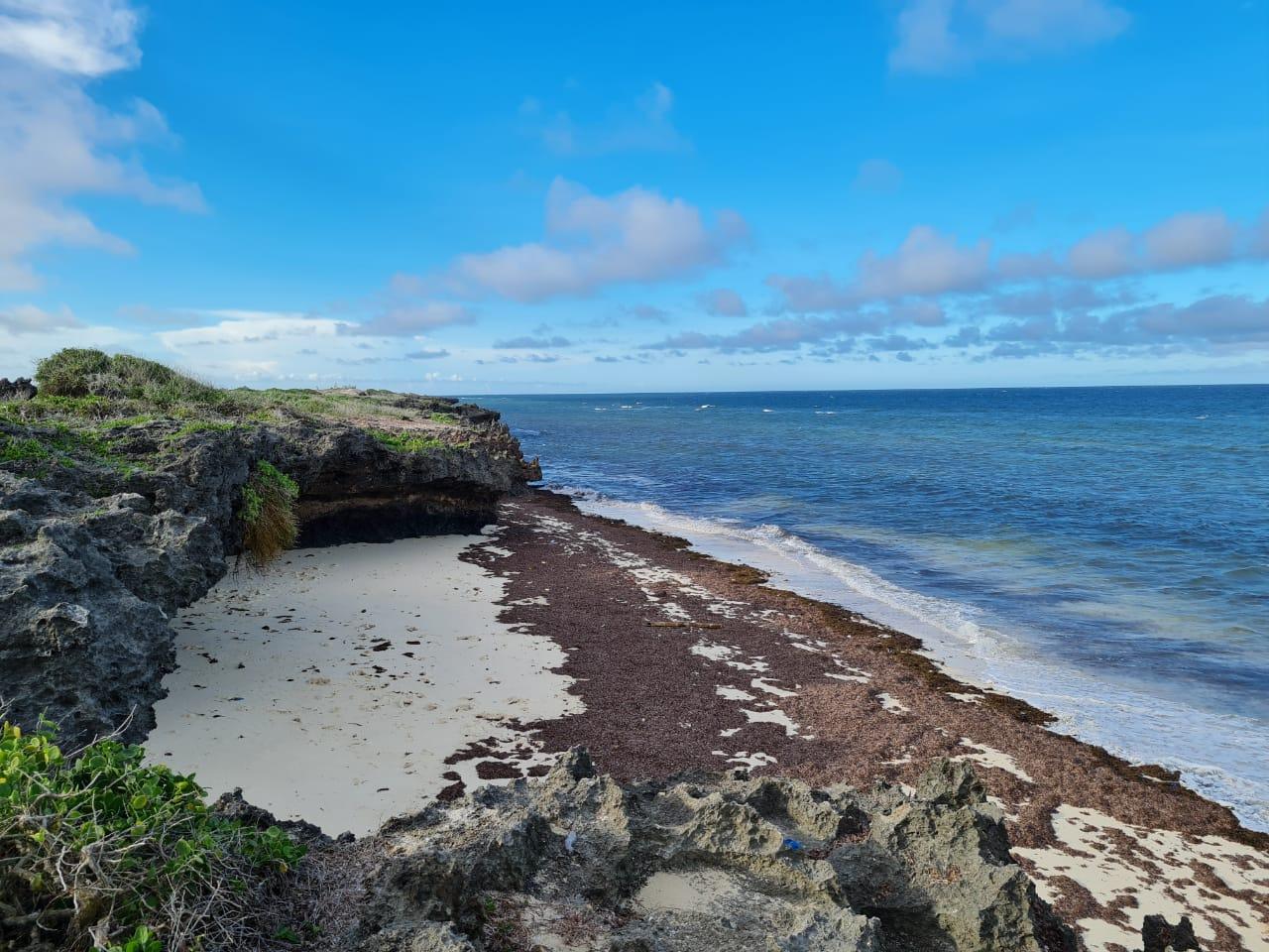 1 Acre beach plots for sale in Kilifi Tezo
